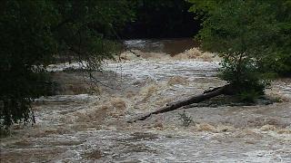 Blackberry Falls en Ellijay a través de 11Alive News