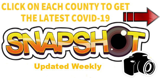 COVID 19 Snapshot graphic